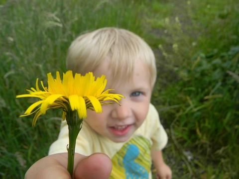 Thane flower